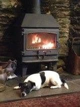Dog friendly pub with wood burning stove