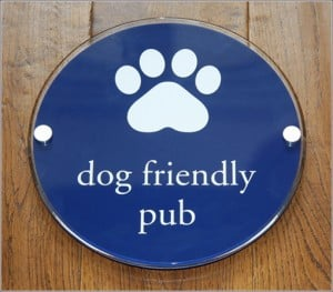 dog-friendly-pub-malborough-300x263